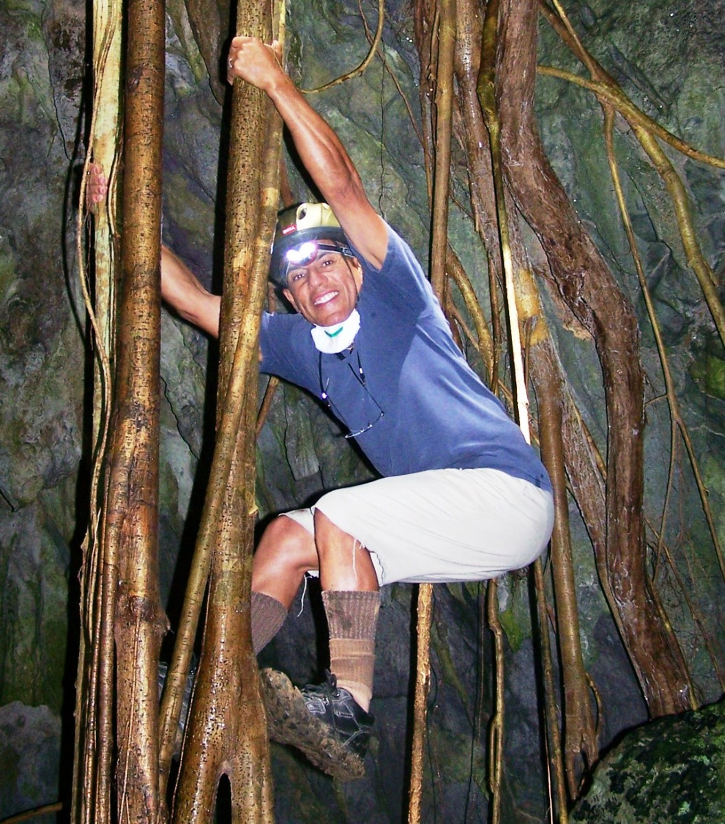 Dr. Eddie Laboy-Nieves climbing a tree