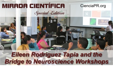 Mirada Cientifica Podcast - Bridge to Neuroscience Workshops