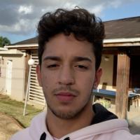 José_Moll's picture