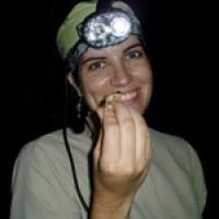 Ana V Longo's picture