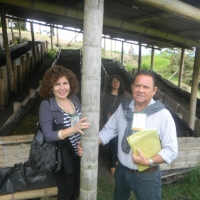 Mariano Robledo diaz's picture
